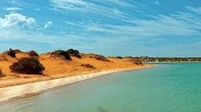mareTV - Australien. In der Haifischbucht